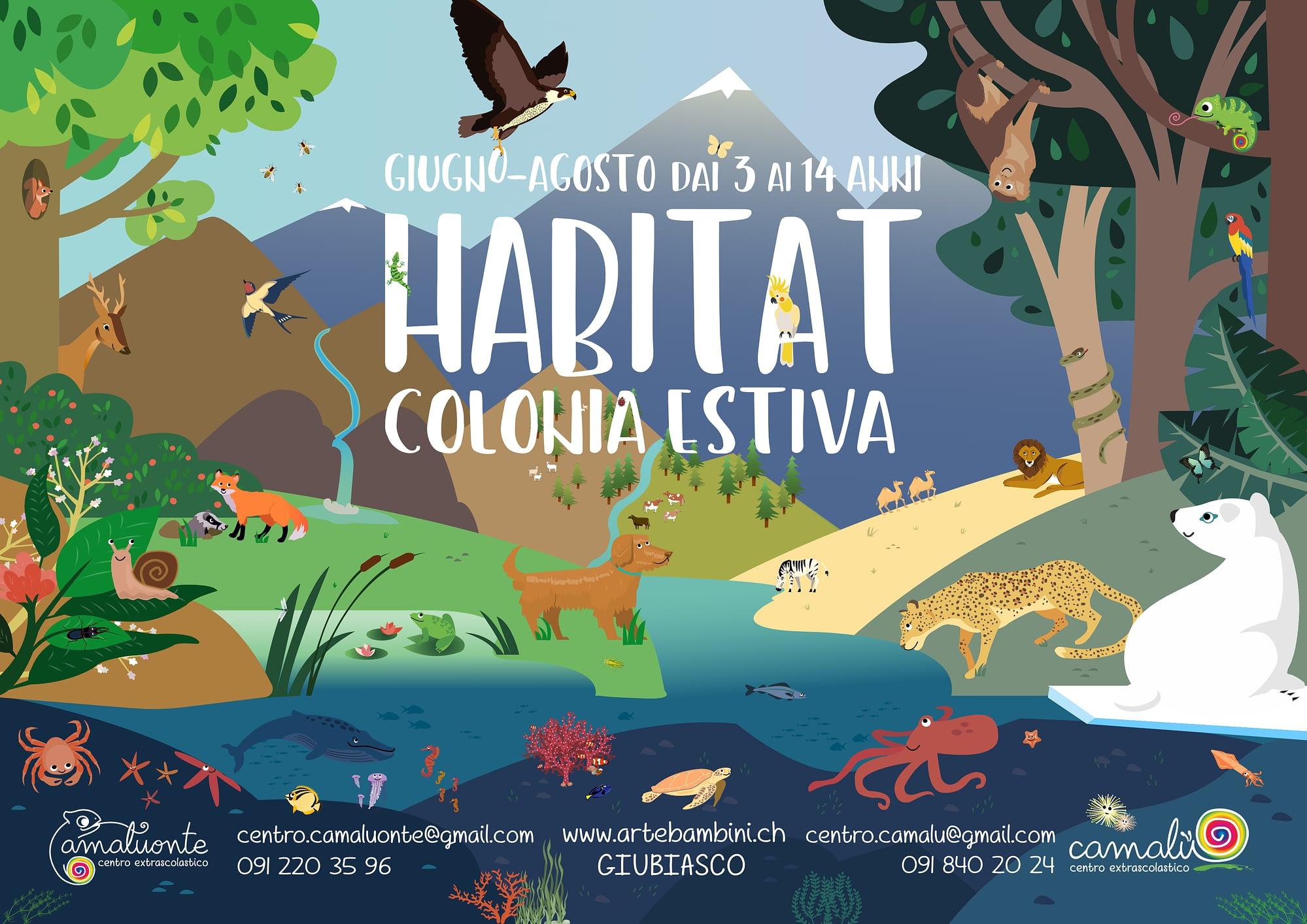 Mostra in un immagine tutti i dieci habitat che esploreremo con i bambini.