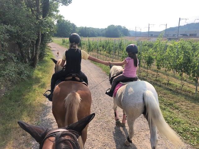 Con i cavalli si conosce a vera amicizia